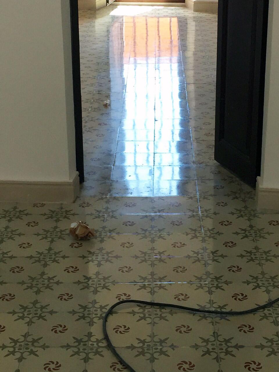 Abrillantado-de-mosaico-hidraulico-Barcelona